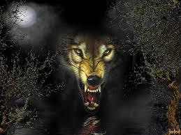 fierce wolf