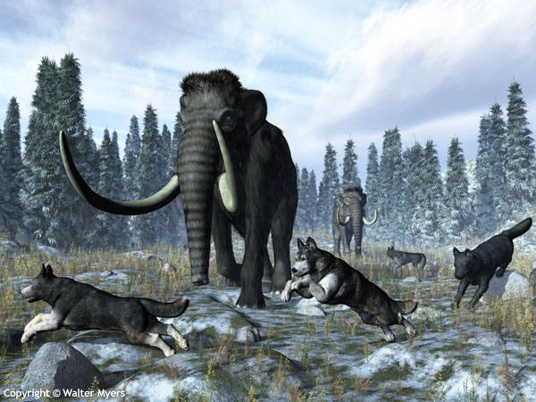Mammoths & dire wolves